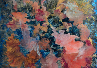 Folie Corallienne
